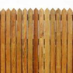 Почему древесина гниет?